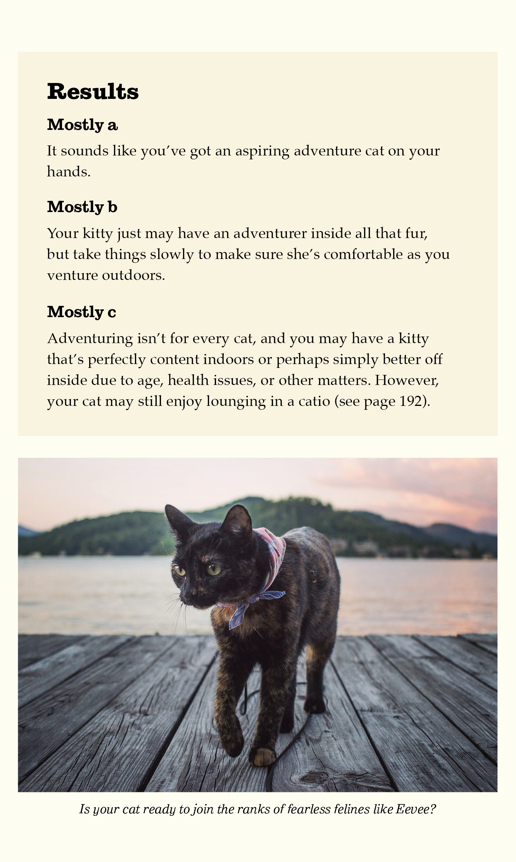 adventurecats-purrsonality-answers.jpg#asset:30621