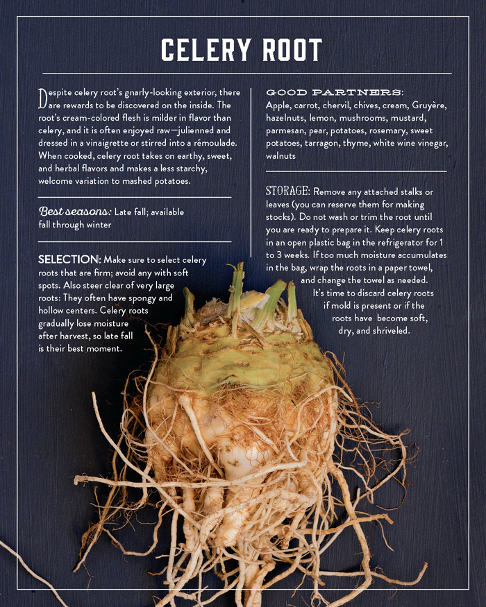 Celery Root from The Vegetable Butcher