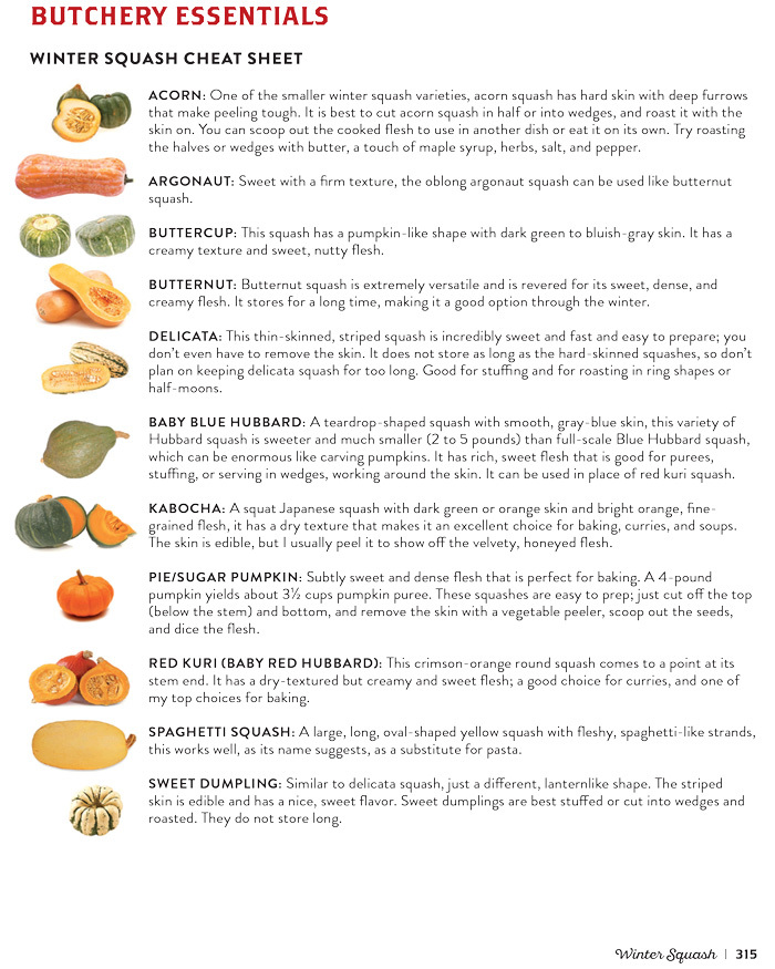 Winter Squash Cheat Sheet from The Vegetable Butcher